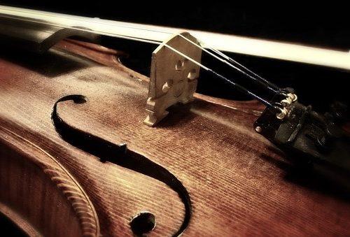 Detailaufnahme eines Geigenkorpus im Gegenlicht.